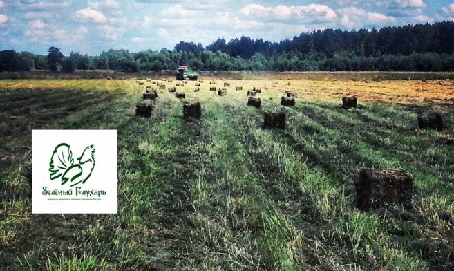 Экоферма «Зеленый Глухарь»: вопросы и ответы