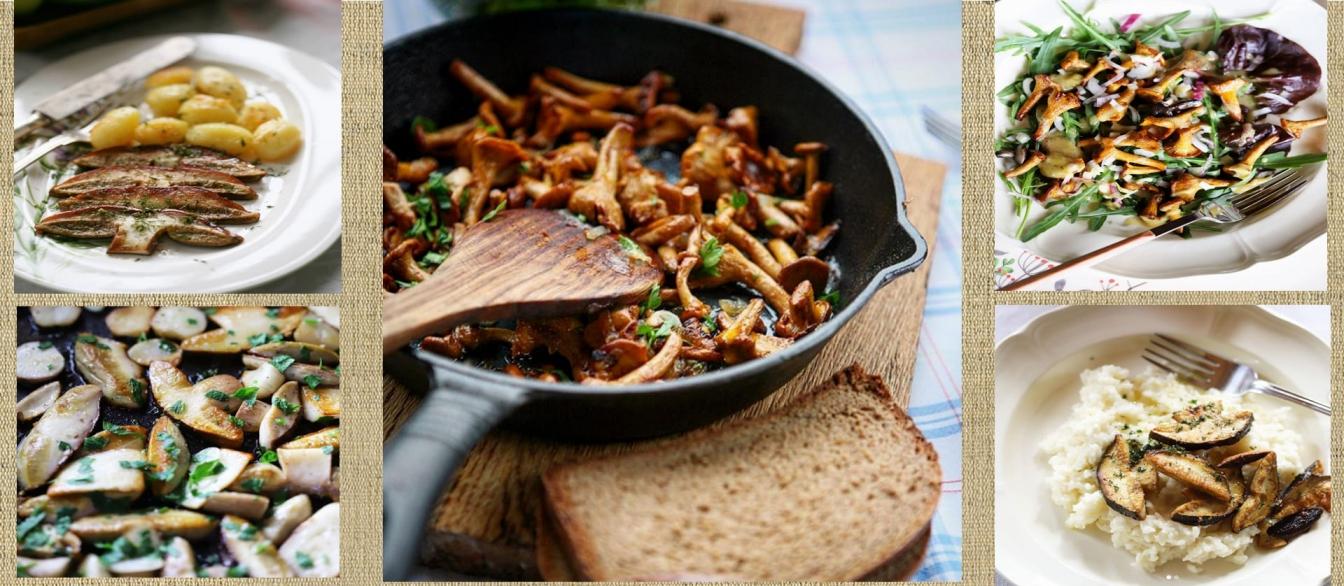 Экоферма «Зеленый Глухарь»: грибные блюда в летнем меню